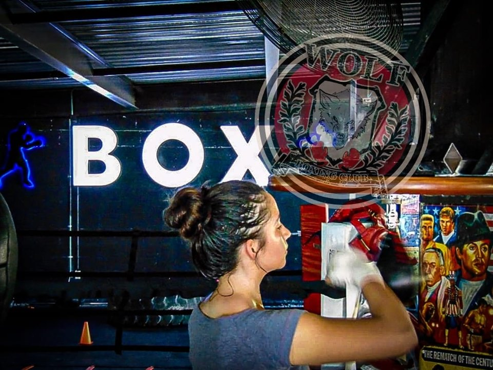 Wolf Boxing Club  cover profesional de Box en
