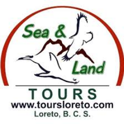 Sea and Land Tours Loreto  perfil profesional de Buceo en Loreto